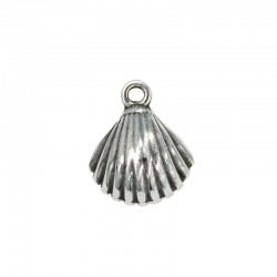 Charms shell